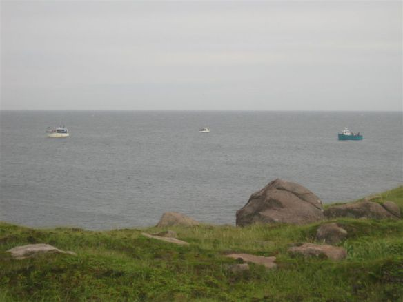 ...and watched the fishing boats.